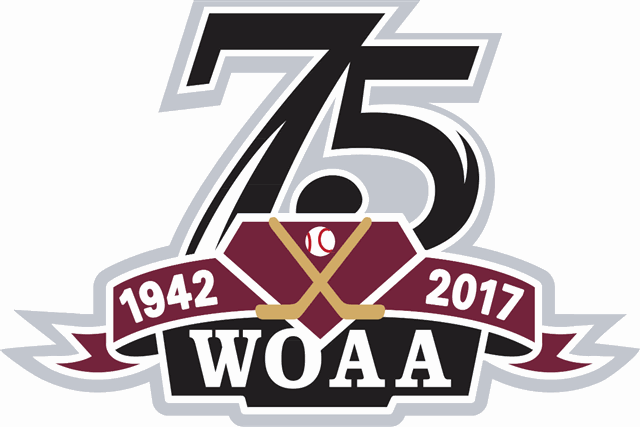 Logo for WOAA Senior Hockey - League Website